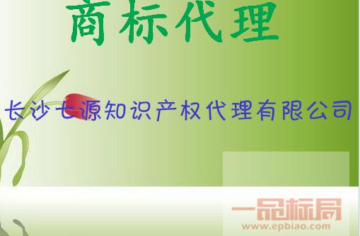 长沙七源知识产权代理有限公司
