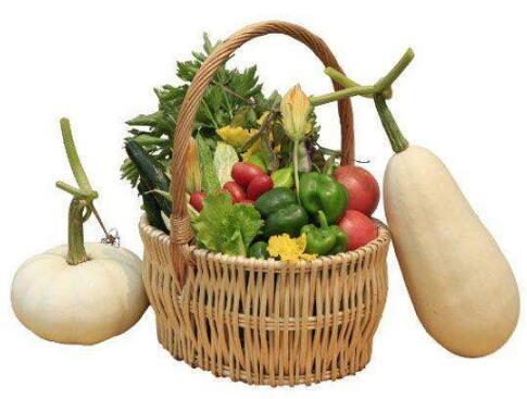 食品商标注册之生态食品属于哪一类?
