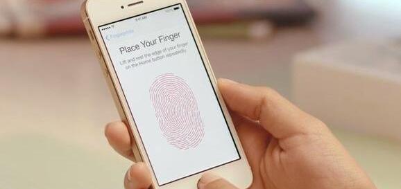 韩国公司起诉苹果与三星 称Touch ID侵权