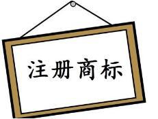 天津宁河区积极做好注册商标专用权保护工作