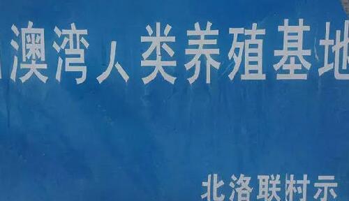 中国魔幻招牌大赛,沙县、中通齐齐中招!
