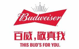 """假冒 """"百威""""商标罐装啤酒,广西玉林兴业县法院审理首起侵犯知识产权罪案件"""