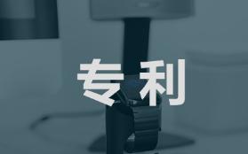 德国汽配巨头格拉默公司中国专利被无效
