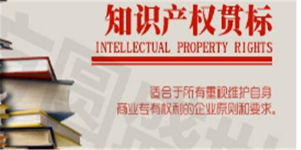 2020年深圳大鵬新區知識產權貫標資助申報指南