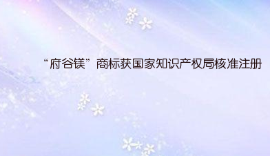 """""""府谷镁""""商标获国家知识产权局核准注册"""