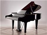 乐器商标:享誉品牌是产品竞争力...